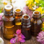 Composition of the Essential Oil of Rosa damascena Mill